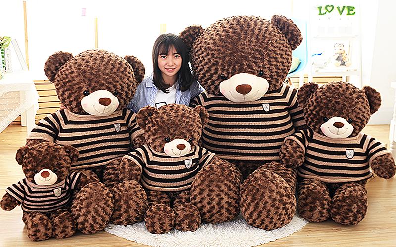 Shop Gấu Teddy Cần Thơ  đủ Size nhỏ đến Size lớn Gấu bông Cần Thơ