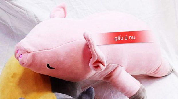 Heo bông - Thú nhồi bông Heo - Gấu bông heo - Lợn Bông   Shop Ú Nu